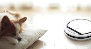 Is a Budget Robot Vacuum Worth It?