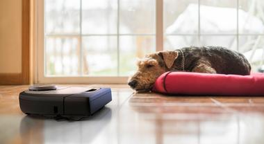 5 Alternatives to the Best Neato Robot Vacuum Cleaners