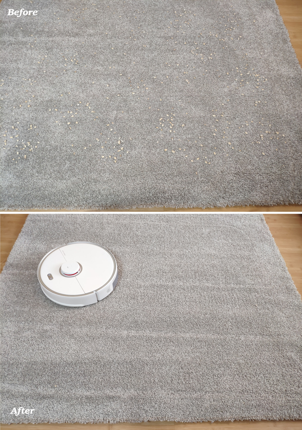 Roborock S5 Max cleaning test on a medium-pile carpet
